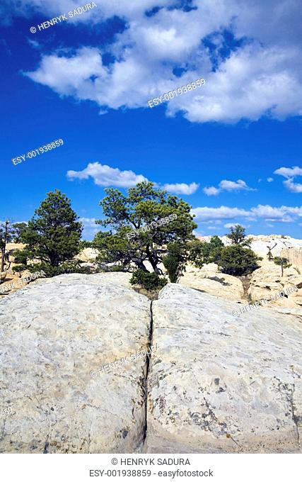 Cheecks Rock in El Morro National Monument