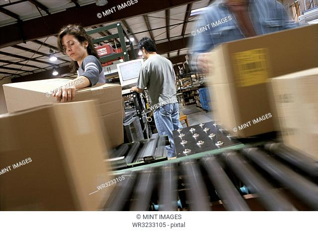 Warehouse employees organizing cardboard boxes moving on a conveyor belt in a distribution warehouse