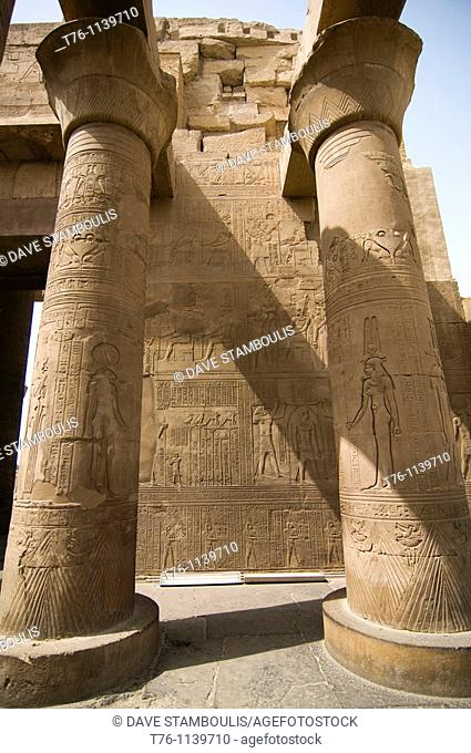 bas relief drawings in the Kom Ombo Temple in Upper Egypt