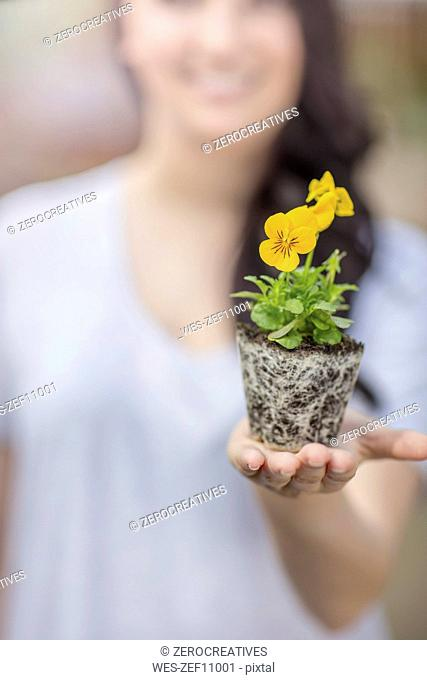 Woman holding plant in garden centre