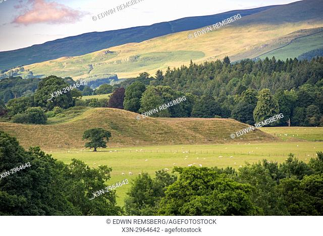 Flock of sheep in the distance graze the lush hilly landscape of Kirkby Longsdale, Cumbria, England