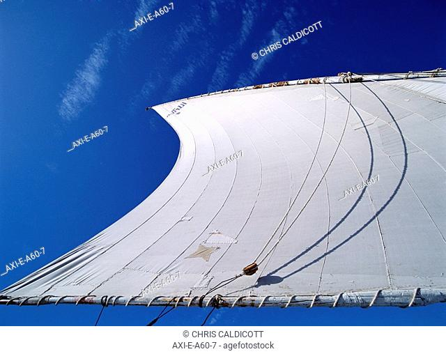 Felucca Sail, Close Up