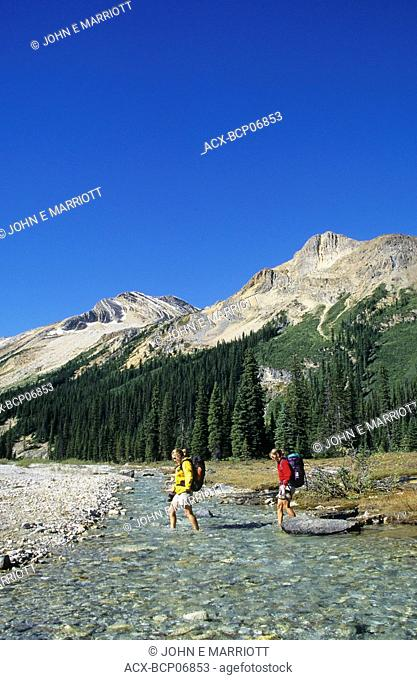 Female backpackers crossing the Little Yoho River, Iceline Trail, Yoho National Park, British Columbia, Canada