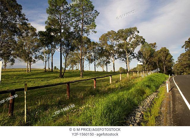 country road near Tea Gardens, Australia