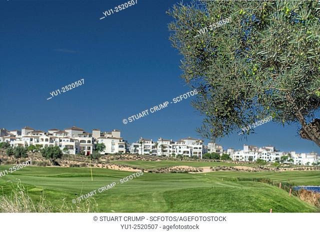 11th green on the Golf Course at Hacienda Riquelme Golf Resort, Murcia, Spain