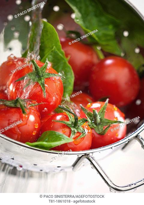 rinsing salad