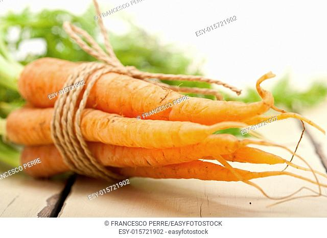 fresh baby carrots bunch tied with rope on a rustic table