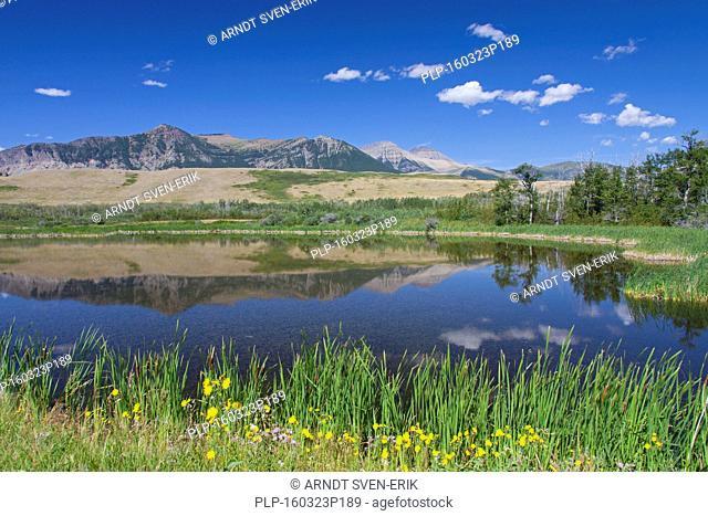 Mountains reflected in lake at Waterton Lakes National Park, Alberta, Canadian Rockies, Canada