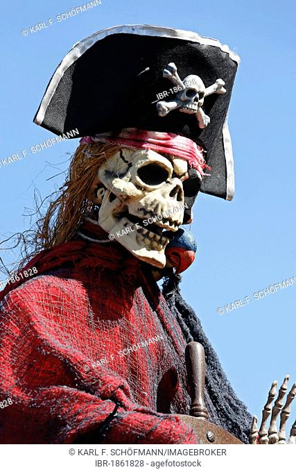 Skeleton with a skull dressed as a pirate, paper-mache figure, parade float at the Rosenmontagszug Carnival Parade 2011, Duesseldorf, North Rhine-Westphalia