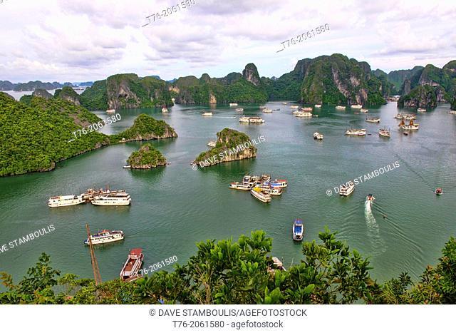 traditional junks sailing in Halong Bay, Vietnam