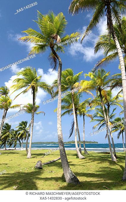 Dubpur Island, San Blas Islands also called Kuna Yala Islands, Panama