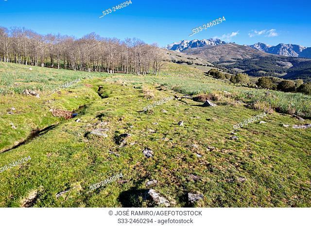 Uncle Ruperto's pools's track in the Sierra de Gredos. Avila. Castilla Leon. Spain. Europe
