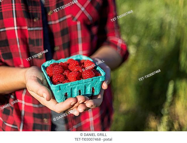 Mid section of woman holding punnet of raspberries