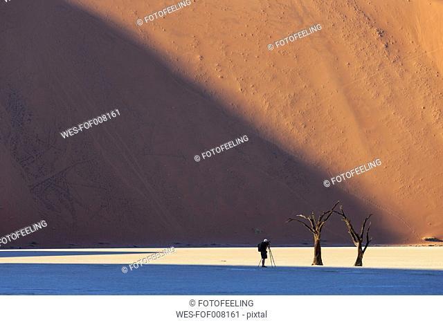Namibia, Namib Naukluft, Namib Desert, man photographing dead acacias on clay pan