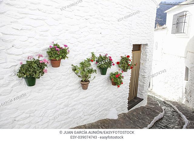 Quiet pretty street with water channel and flowerpots in the wall, Alpujarras, Granada, Spain