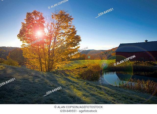 USA, Vermont, nr Woodstock, Jenne Farm