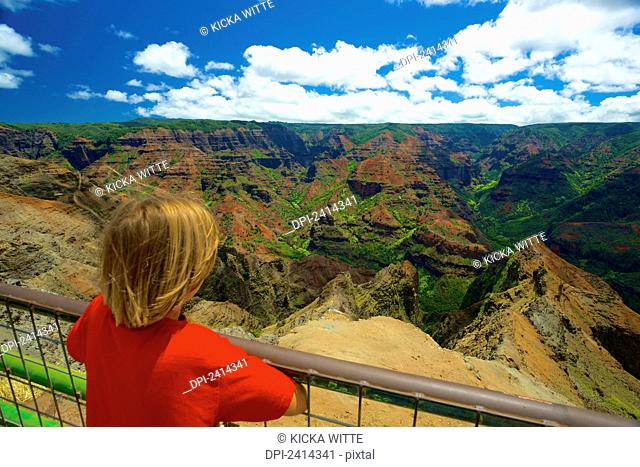 A child looks over a railing at Waimea Canyon; Kauai, Hawaii, United States of America