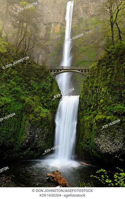Multnomah Falls and Bridge, Columbia Gorge Nat Scenic Area, Orgeon, USA