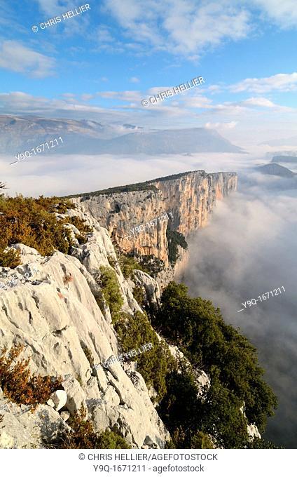 Escalès Cliffs and Morning Mist in the Verdon Gorge Alpes-de-Haute-Provence Provence France