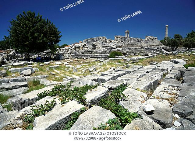Temple of Apollo. Didyma. Ancient Classic Greece. Asia Minor. Turkey