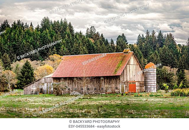 Old Abandoned Barn, Color Image