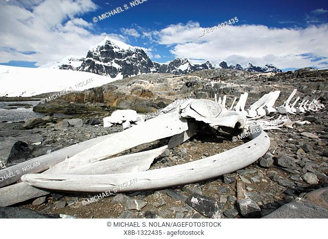 The old British Whaling Station at Port Lockroy and the whalebones across the bay at Point Jougla near Weincke Island, Antarctica