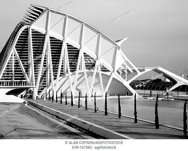 Museo de las ciencias Príncipe Felipe. City of Arts and Sciences, by S. Calatrava. Valencia. Spain