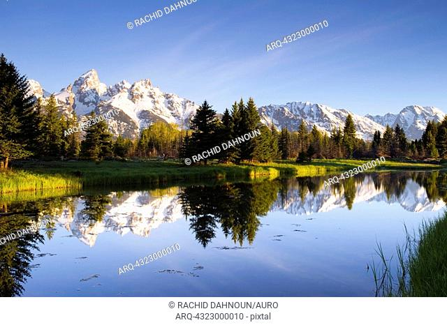The Tetons reflect in Schwabacher's Landing in Grand Teton National Park, Wyoming