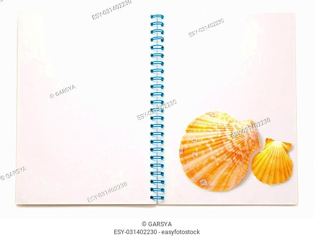 Blank open notepad with seashells on white background