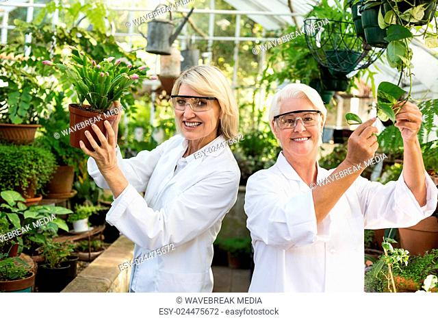Female coworkers smiling while examining potted plants