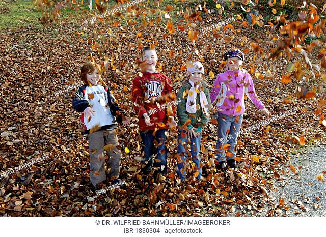 Children are playing and throwing with leaves in autumn