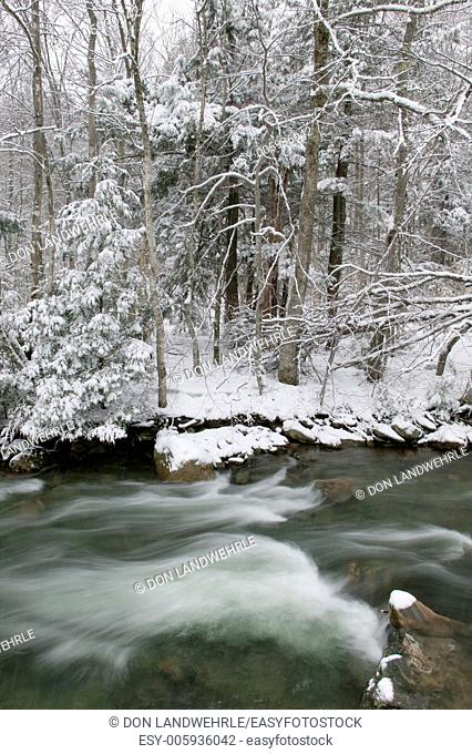 River running through snow covered trees, Stowe, Vermont, USA