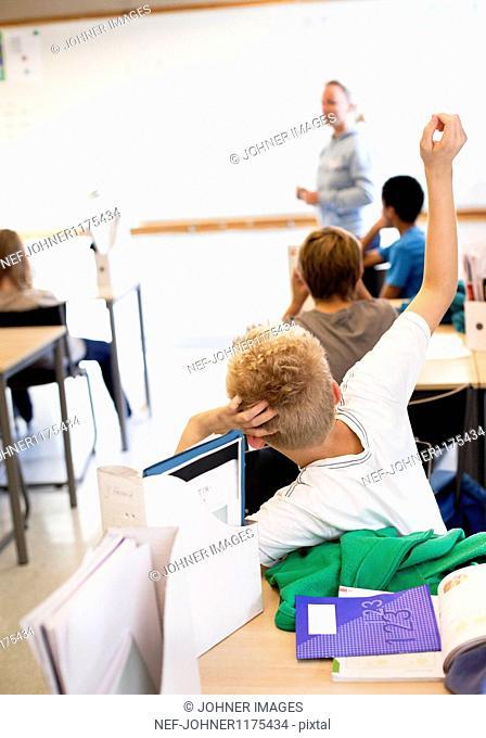 Schoolboys and teacher in classroom