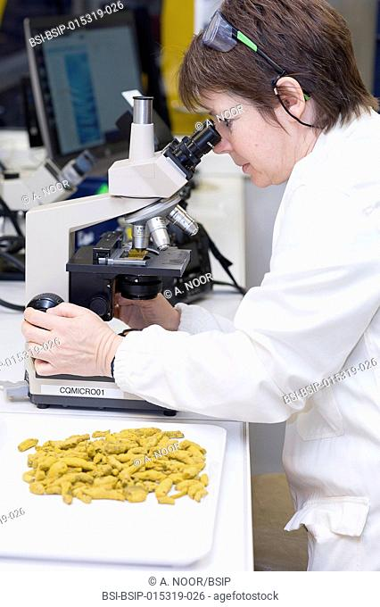 Reportage in the French Arkopharma lab in Nice, France. This pharmaceutical lab is specialized in the phytotherapy, natural medicine and dietary supplement...