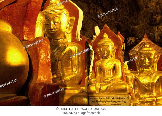 Golden Buddha statues in the Pindaya cave. Myanmar