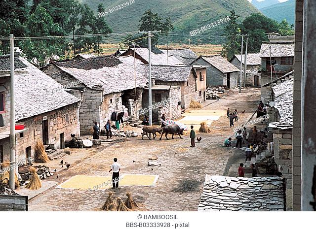 Sun-drying grain outside houses, Shitouzhai in Huangguoshu scenic area, Anshun City, Guizhou Province of People's Republic of China