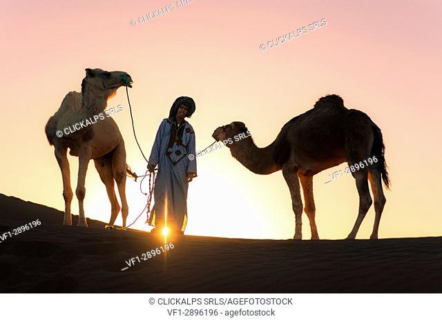 Erg Chigaga, Sahara desert, Morocco, Northern Africa