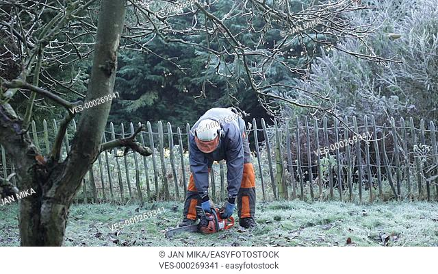 Professional gardener with chainsaw in action