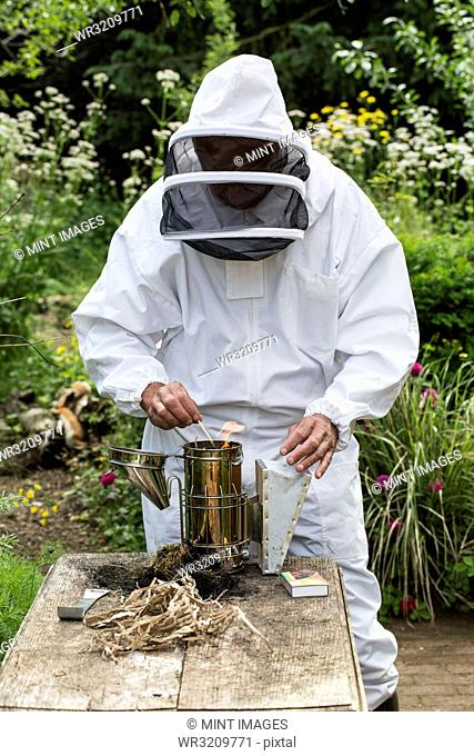 Beekeeper wearing protective suit at work, lighting fire in metal smoker to calm bees