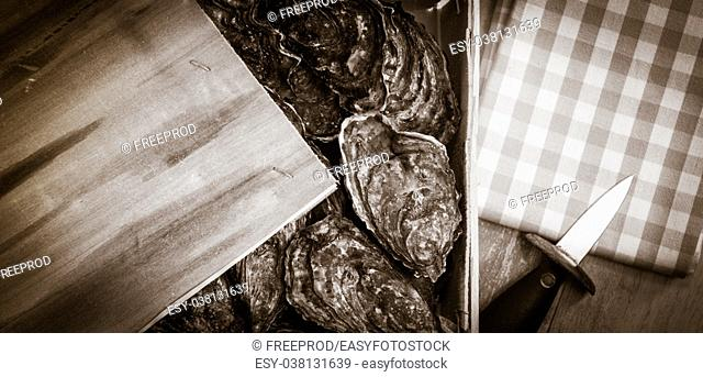 Raw oysters with lemon on wood board and bottle of wine and glass, France