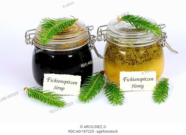 Norway Spruce tip sirup and Norway Spruce tip honey, Picea abies