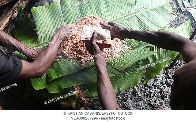 Man from the Kombai tribe making a loave from Sago in banana leaf, Papua, Indonesia, Southeast Asia