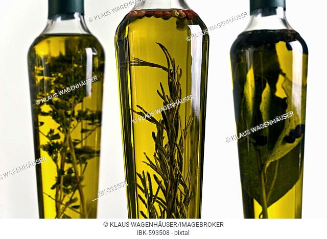 Olive oils infused with herbs - rosemary, red pepper, oregano, laurel, and juniper