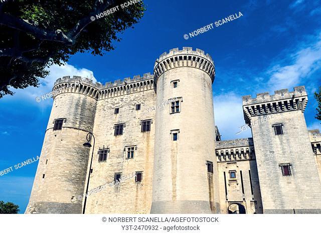 Europe. France. Bouche-du-Rhone. Alpilles. Tarascon. The medieval castle of King René, fifteenth century