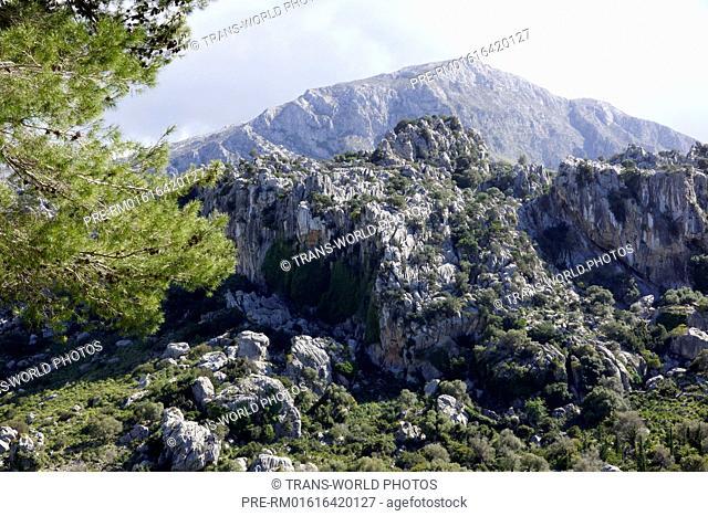 Serra de Tramuntana, landscape near Valldemossa, Mallorca, Spain / Serra de Tramuntana, Landschaft bei Valldemossa, Mallorca, Spanien
