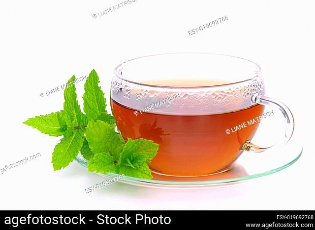 Tee Pfefferminze - tea Peppermint 02