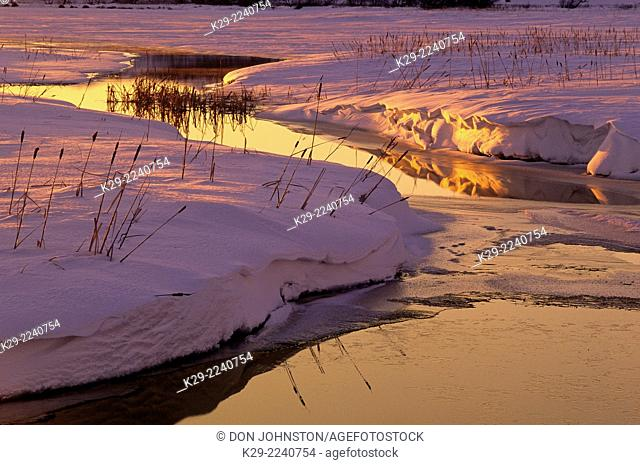 Robinson Creek in mid winter at sunset, Greater Sudbury, Ontario, Canada