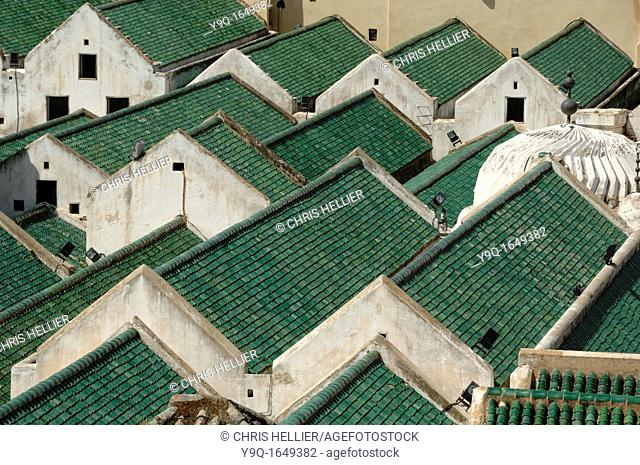 Green Roofs of Kairaouine Mosque and University founded in 859 Fez Morocco