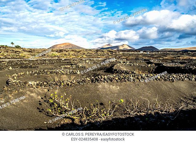 Volcanoe landscape in Lanzarote, Canary Islands, Spain