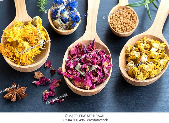 Herbs on wooden spoons on a dark background. Dried calendula, cornflower, rose petals, fenugreek seeds, mullein, star anise, fresh rosemary and thyme